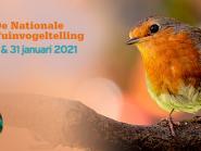 Uitslag nationale vogeltelling
